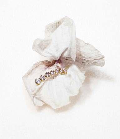 Motif d'oreille Croissant Argyle en or et diamants, Sophie Bille Brahe. © Casper Sejersen
